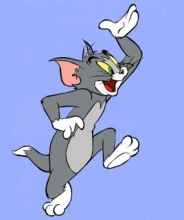 gato famoso tom