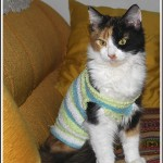 2012-08-Medea-en-camiseta-1082