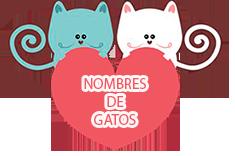 nombres de gatos